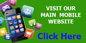 visit main website